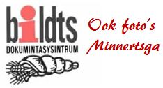 BDS-logo-aangepast