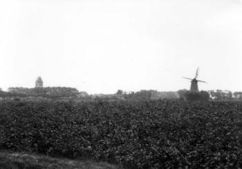 Gezicht op toren en pel- en korenmolen