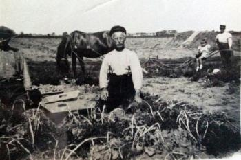 Pieter Gerrits Bierma