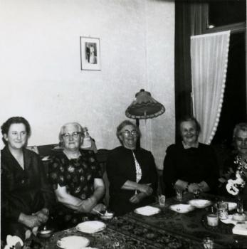 Zusters De Vries