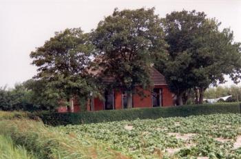 Tjessingawei