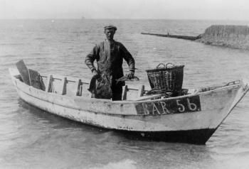 Haringboot BAR 56