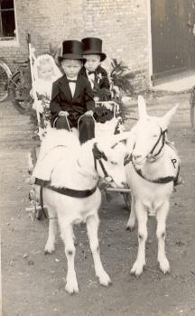 Jan en Symie Zoodsma en Afke Vis
